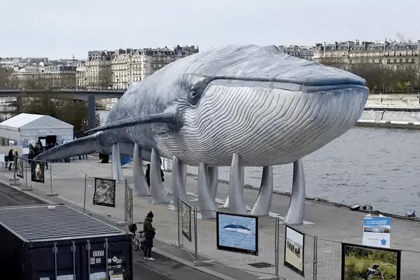 フランス-パリ-鯨の彫刻