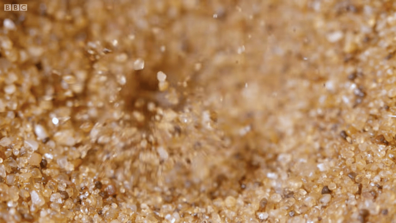 蟻地獄-砂かけ