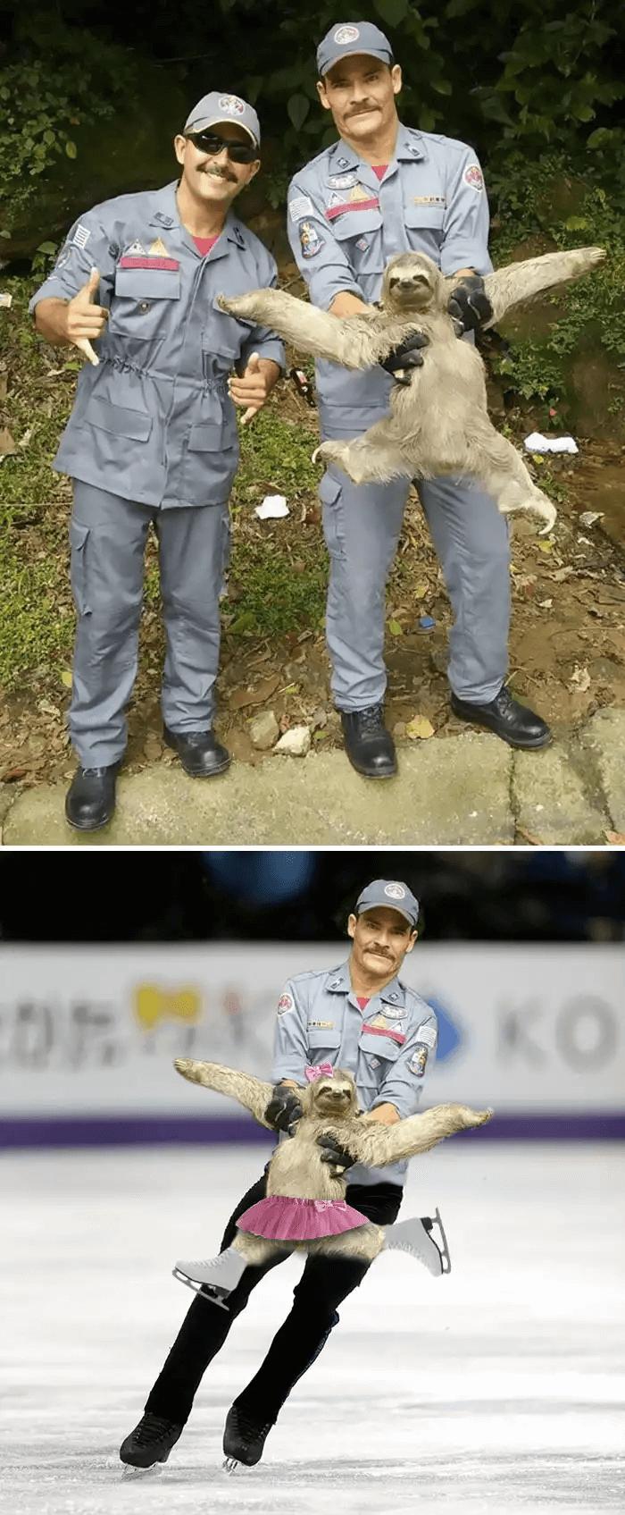 ナマケモノ-スケート