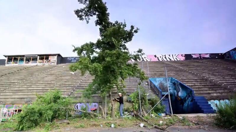 化学物質で放棄されたサッカースタジアムの木