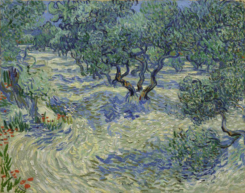 ゴッホ-オリーブの木々