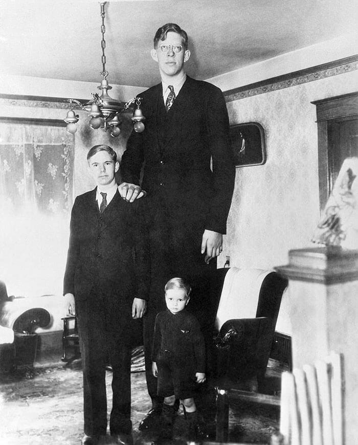 世界一身長が高い男-ロバート・ワドロー氏