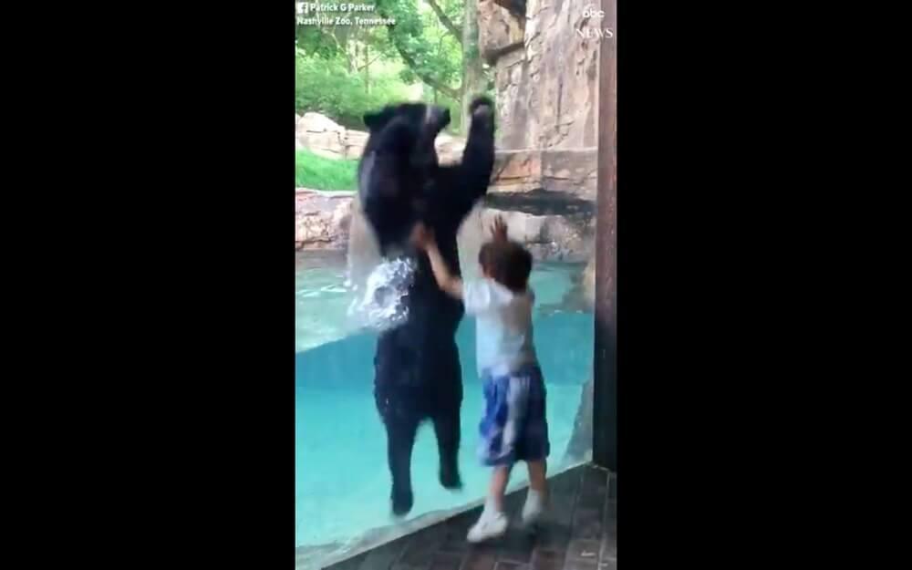 5歳の男の子と一緒にジャンプする動物園の熊