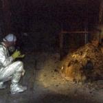 チェルノブイリ原発事故で残った放射線を放つ巨大な塊。その名は「象の足」。