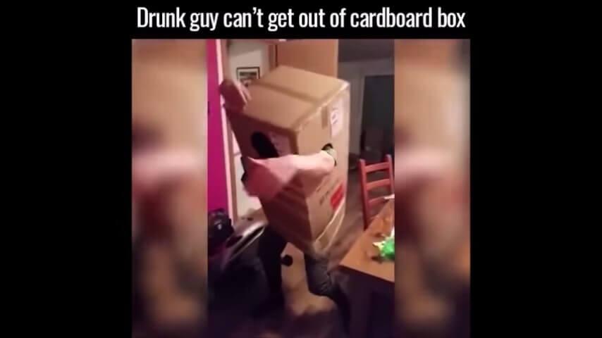 酔っ払ってダンボールが脱げない男