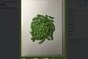リアルな枝豆の絵