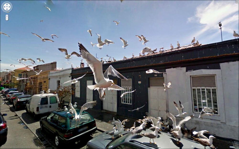 グーグルマップ・ストリートビューで撮られた面白い写真
