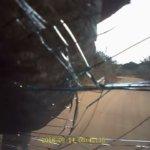 【凶暴】ちょ、バリバリじゃないよ。道で出くわした象に車がペシャンコにされる事件が勃発