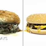 これはエグい…添加物が普通に入ったマックvsオーガニックなハンバーガーが腐敗していく様子を比較したタイムラプス映像