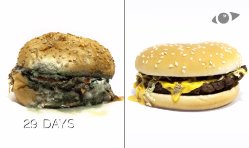 マックのハンバーガーとオーガニックのハンバーガーの比較